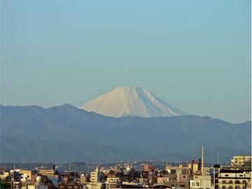 fuji2008.jpg