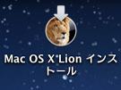 lion-install.jpg