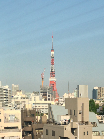 t-tower201306